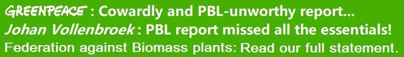 2020-05-08-thefab-response-to-pbl-report-on-the-availability-and-applications-of-sustainable-biomass-english